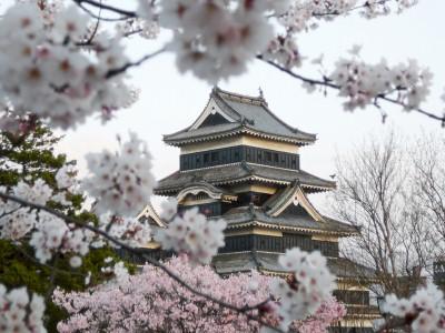 Die Bewundernswerte Haltung Der Japaner Katholisch